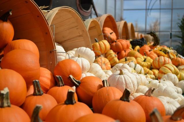 gourds-949112_960_720