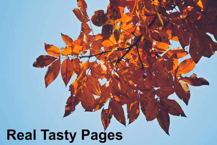 Real Tasty Pages